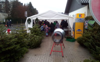 Weihnachtsbaumverkauf am Campingplatz Winterberg